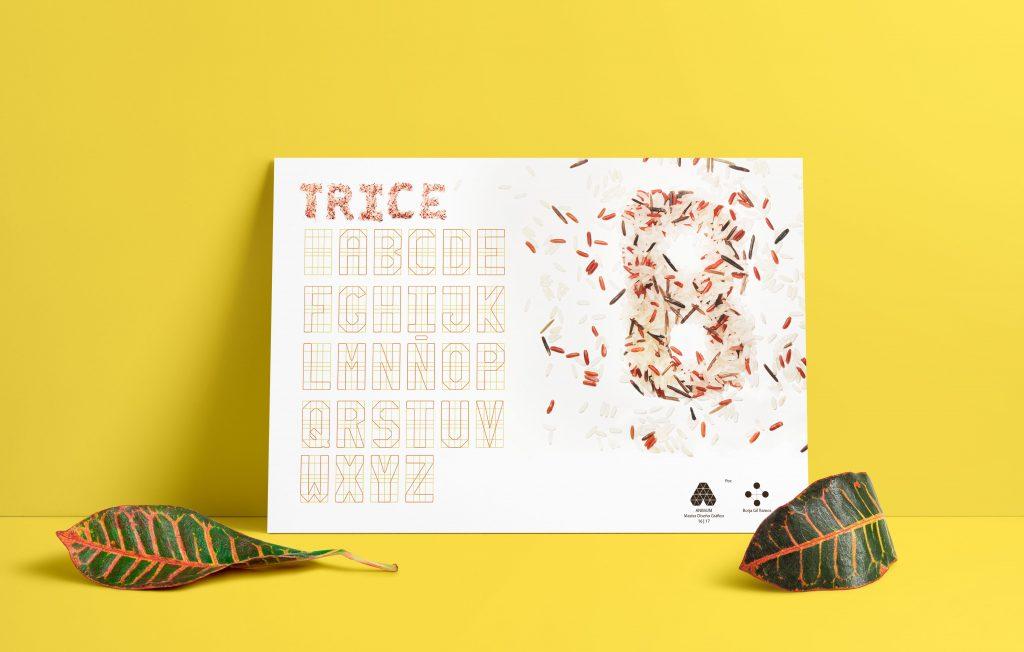 TRICE - una tipografía de arroz